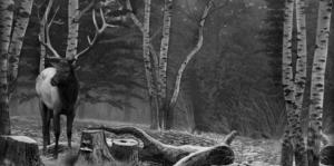 Пейзаж 15 - Гравировка пейзажей на памятнике, производство и доставка по РФ