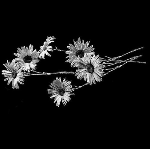Цветок 15 - Гравировка цветка на памятнике, производство и доставка по РФ