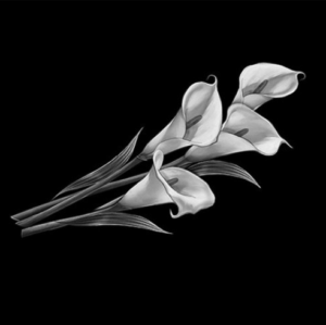 Цветок 19 - Гравировка цветка на памятнике, производство и доставка по РФ