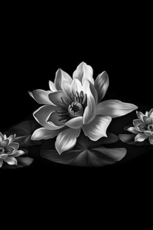 Цветок 21 - Гравировка цветка на памятнике, производство и доставка по РФ