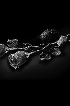 Цветок 7 - Гравировка цветка на памятнике, производство и доставка по РФ